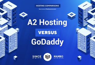 A2 Hosting vs. GoDaddy