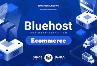 Bluehost Ecommerce Review