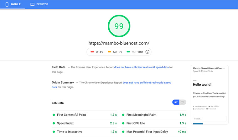 Bluehost Google Speed Test May