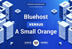 Bluehost vs. A Small Orange