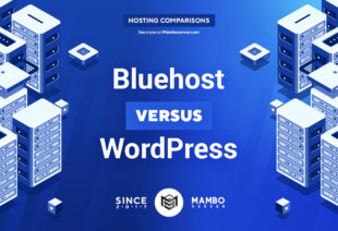 Bluehost vs. WordPress