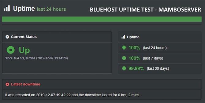 Bluehsot Uptime Test