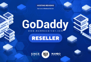 GoDaddy Reseller Review