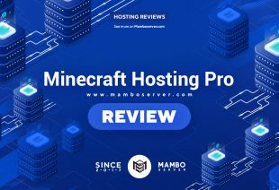 Minecraft Hosting Pro Review